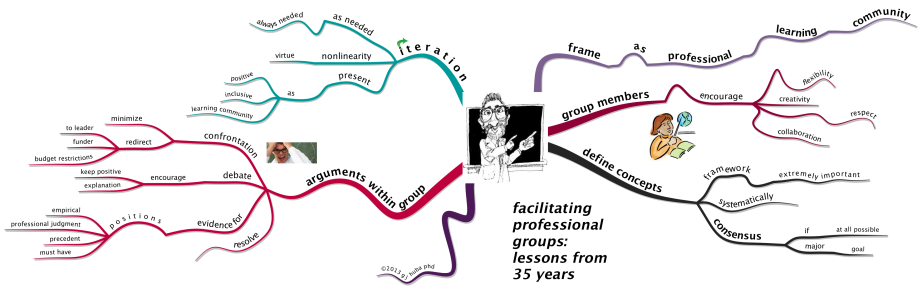 facilitating professional groups